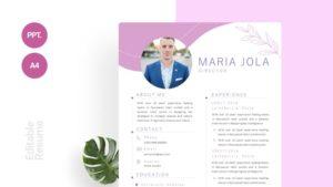 Minimalist Simple CV Template