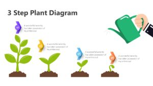 3 Step Plant Diagram Infographic Template